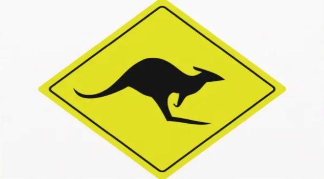 Respekt, ich heisse Känguruh!